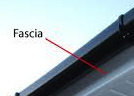 what is a fascia